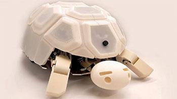 Shelly หุ่นยนต์สุดเทพที่จะช่วยลดความรุนแรงในเด็ก