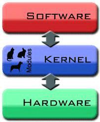 kernel คืออะไร เคอร์เนิล คือ ส่วนประกอบหลักที่สำคัญมากของระบบปฏิบัติการ