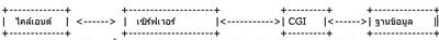 CGI คืออะไร ซีจีไอ คือ โปรโตคอลที่ใช้ในการติดต่อระหว่าง browser ตัว server
